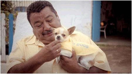 Wi-Fi Dogs spüren WLAN auf | Bild zur Verfügung gestellt von Telekom
