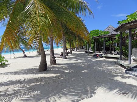 Strand auf den Malediven | Foto: pixabay.com, CC0 Public Domain