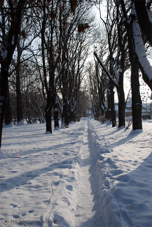 Schnee im Winter | Foto: © Bilderrampe.de
